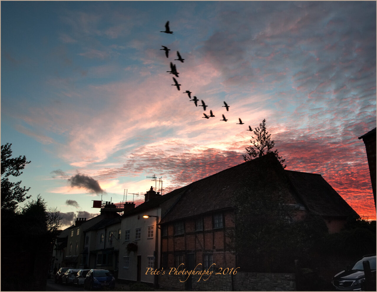 Geese flying over Bidford